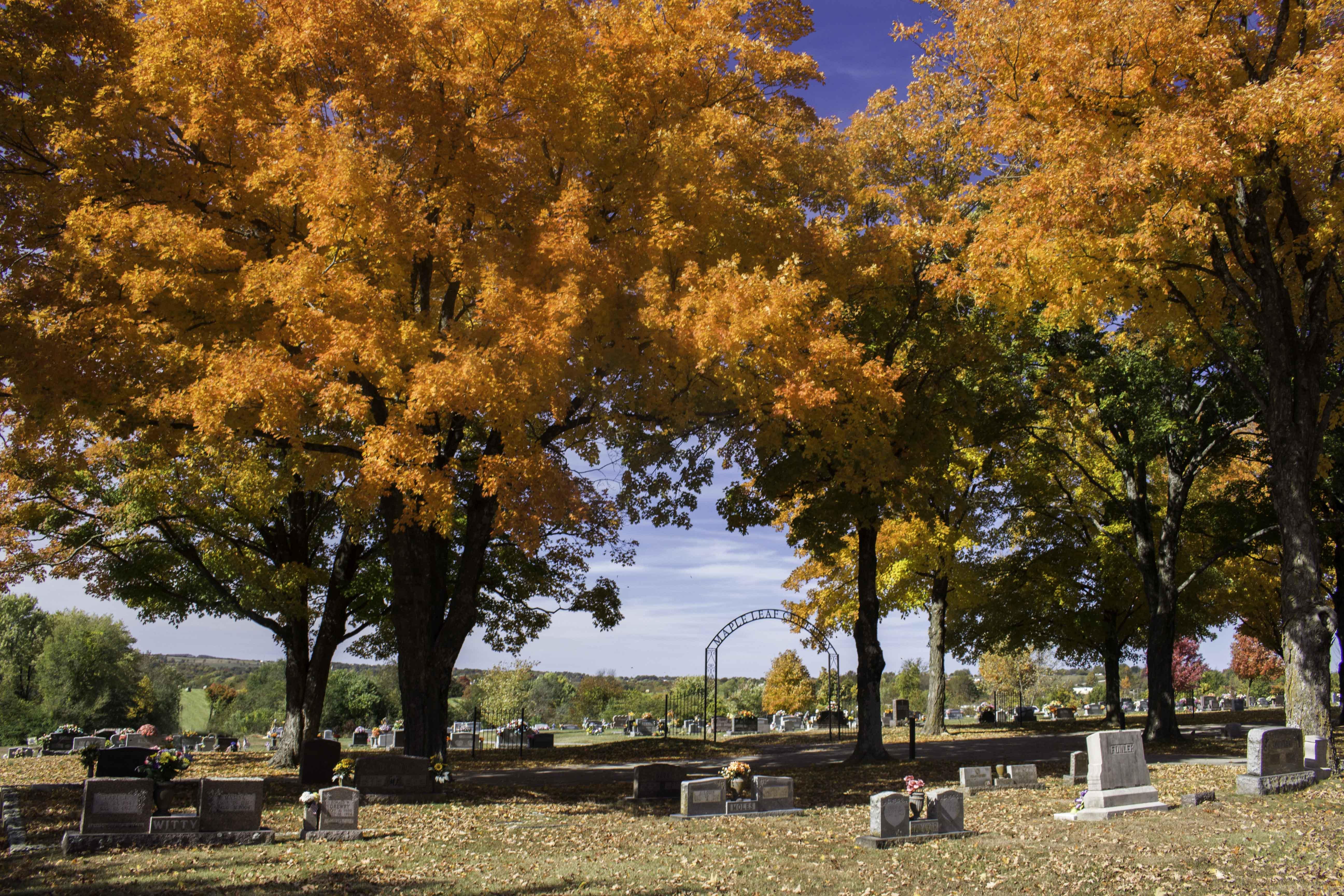 Arkansas Fall Color, 2018